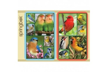 Songbirds Playing Cards