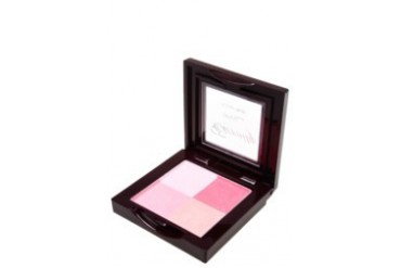 4U2 ENVY ETERNITY 4 COLOR BLUSH - BERMUDA / 5gm