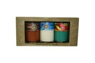 Candle Gift Set Set Includes 3 Soy Candle Tumblers Featuring Bayberry,