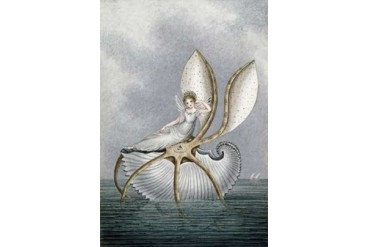 A Fairy Resting On a Shell Poster Print by Amelia Jane Murray (24 x 36)