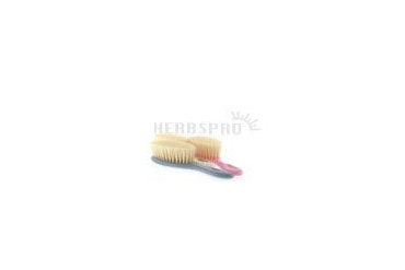 Hairbrush Baby Natural Assorted Colors 5121 1 Unit