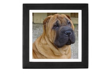 Shar-Pei - Pets Keepsake Box by CafePress