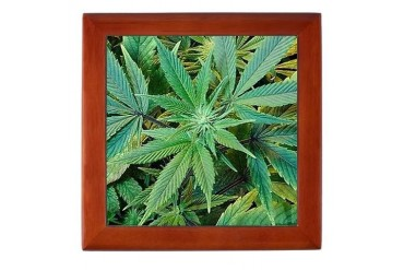 Stash Box Marijuana Keepsake Box by CafePress