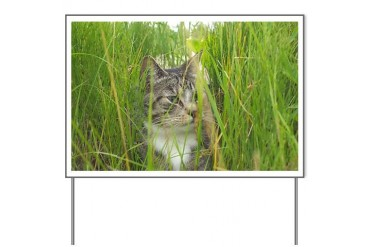 Stalking Kitty Funny Yard Sign by CafePress