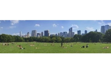 Tourists resting in a park, Sheep Meadow, Central Park, Manhattan, New
