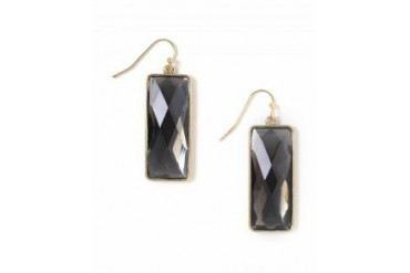 Marlyn Schiff Faceted Rectangle Earrings Brown