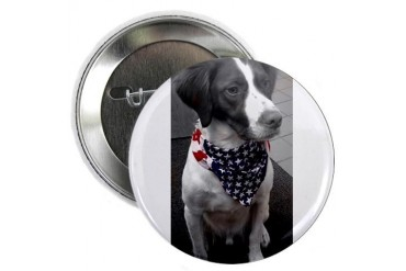Patriotic Bird Dog American flag 2.25 Button by CafePress