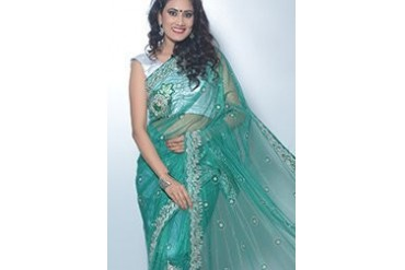 Crystal Embellished Net Saree