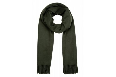 Acne Studios Green Lambswool Canada Scarf