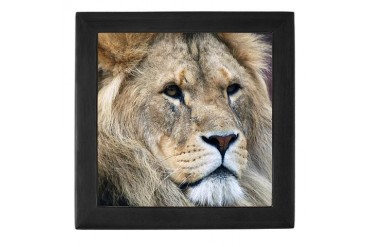 Lion Family Keepsake Box by CafePress