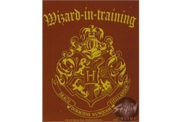 Harry Potter Wizard in Training Stickers