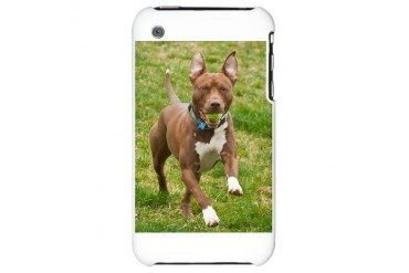 Pit Bull 11 Pets iPhone 3G Hard Case by CafePress