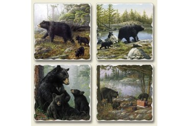 Black Mother Bear Baby Cubs Keeping Watch Tumbled Stone Coasters Set of 4