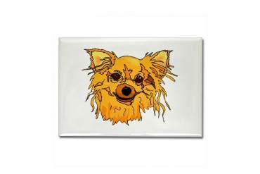 Hairy blonde dog head brown eyes graphic Rectangle Dog Rectangle Magnet by CafePress