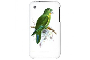 Green Parrot Illustration Bird iPhone 3G Hard Case by CafePress