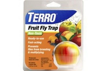 6 Pack Woodstream T2500 Terro Fruit Fly Trap, Fly Catcher