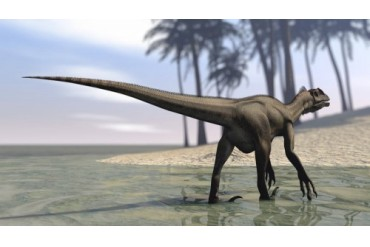 Utahraptor walking in shallow water.