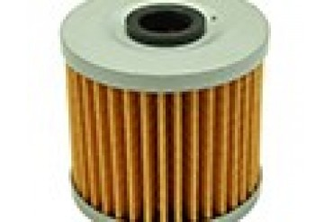 AEM High Volume Fuel Filter Element Replacement for 25-200BK Universal