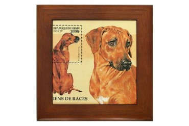Rhodesian Pets Framed Tile by CafePress