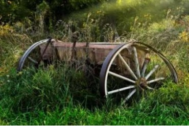 Abandoned Farm Equipment Poster Print by C. Thomas McNemar (24 x 36)