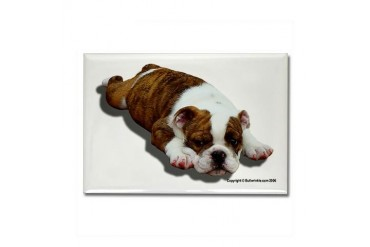 Bulldog Puppy Pets Rectangle Magnet by CafePress