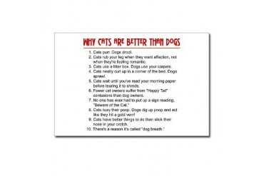 Cats Are Better Than Dogs Pets Postcards Package of 8 by CafePress