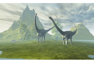 Diplodocus dinosaurs walk together in the afternoon in the prehistoric age.