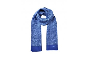 Pure Silk Fringed Men's Scarf