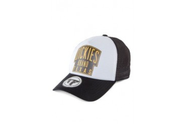 Dickies Shield Curved Peak Trucker Cap
