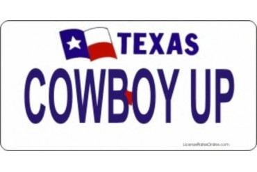 Design It Yourself Custom Texas Plate. Free Personalization on Plate