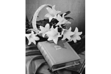 Close-up of Easter Lilies and Bible Poster Print (18 x 24)