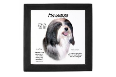Havanese Pets Keepsake Box by CafePress