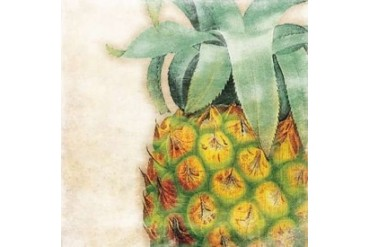Tropical Pineapple Poster Print by Jace Grey (24 x 24)