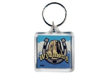 Ddi Wyoming Keychain Metal Elements (pack Of 108)