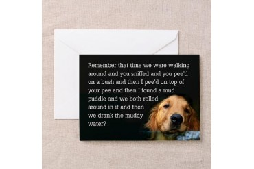 Golden Retriever Puddle Birthday Cards Pk of 10 Funny Greeting Cards Pk of 10 by CafePress