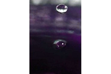 Grape Drink Drop IV Poster Print by Tammy Putman (10 x 14)