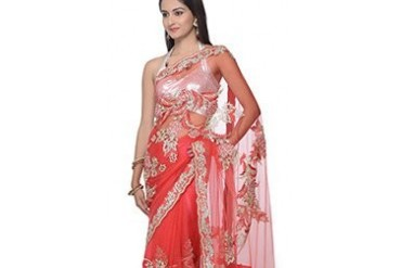 Gorgeous Stones Enhanced Net Saree