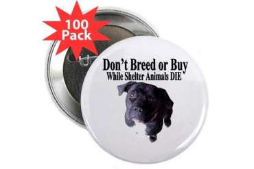 Updated Don't Breed or Buy 2.25 Button 100 pac Art 2.25 Button 100 pack by CafePress
