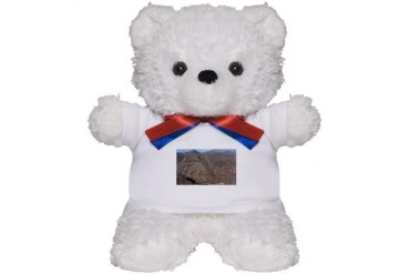 TONTONATFOREST.png Nature Teddy Bear by CafePress