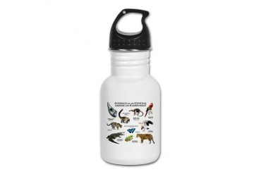 Central American Rainforest Art Kid's Water Bottle by CafePress