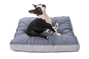 Woof Large Orthopedic Pet Bed