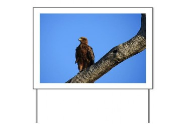 Eagle Laptop Skins Africa Yard Sign by CafePress