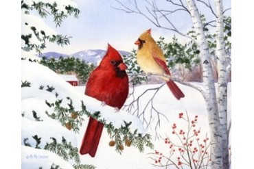 Cardinals And Hemlock Tree Poster Print by Maureen Mccarthy (20 x 16)
