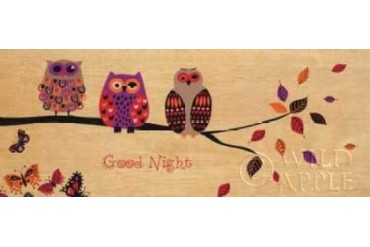 Good Night Owl Poster Print by Wild Apple Portfolio (24 x 48)
