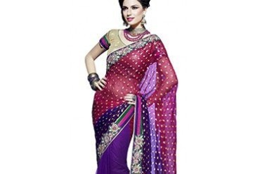 Vibrant Half And Half Saree
