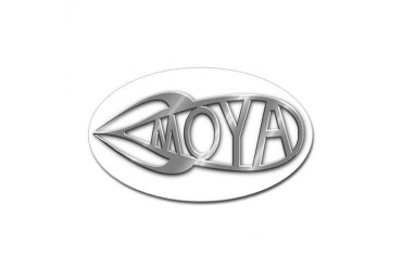 Moya Fish Shiny Fish Sticker Oval by CafePress