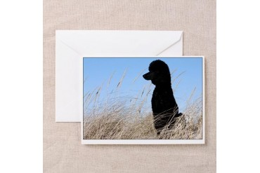 Sitting Poodle Greeting Cards Pets Greeting Cards Pk of 10 by CafePress