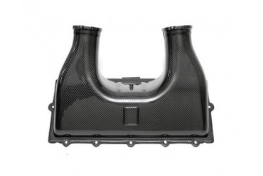 Fabspeed Carbon Fiber Air Box Cover Ferrari 458 Italia 10-14