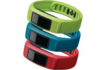 Garmin 010-12336-02 Vivofit 2 Band Active Lrg