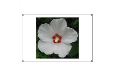 Lovely Rose of Sharon Tree Banner by CafePress